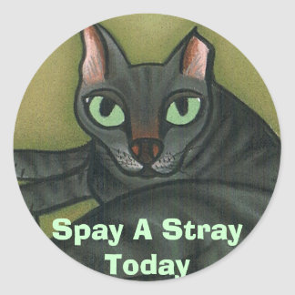 Feral cat, Spay A Stray Today - Customized Classic Round Sticker