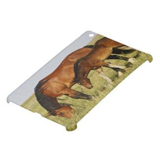 Feral Horse Equus caballus) wild horse mother iPad Mini Covers