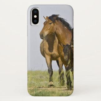 Feral Horse Equus caballus) wild horses 3 iPhone X Case