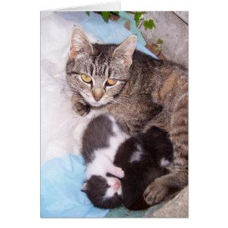 Feral mom greeting card