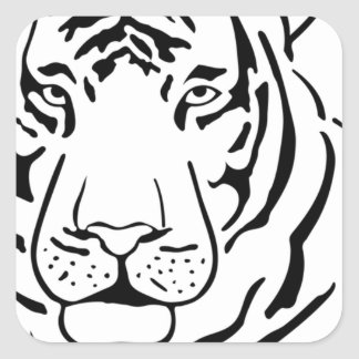 Feral Tiger Drawing Square Sticker