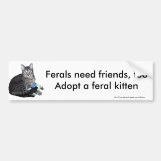 """Ferals need friends"" kitten bumper sticker"