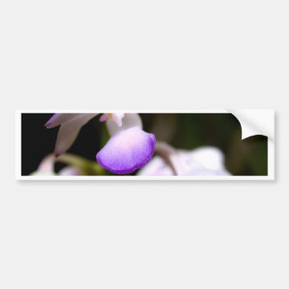 fermé de la fleur d'orchidée autocollant de voiture