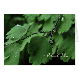 Fern and Raindrops Thank You Card