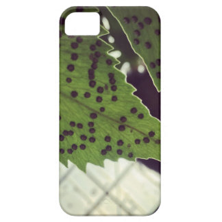 fern case for the iPhone 5