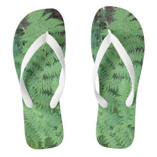 fern flip-flops flip flops