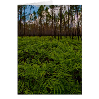 Fern Floor Card