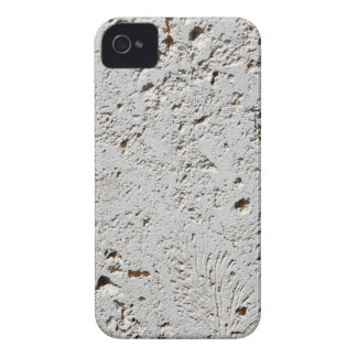 Fern Fossil Tile Surface Closeup Case-Mate iPhone 4 Cases