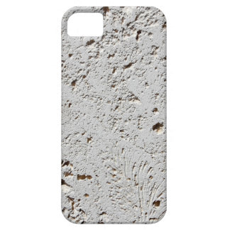 Fern Fossil Tile Surface Closeup iPhone 5 Cases