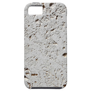 Fern Fossil Tile Surface Closeup iPhone 5 Covers