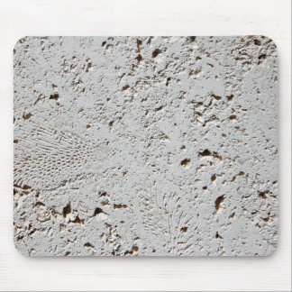 Fern Fossil Tile Surface Closeup Mouse Pad