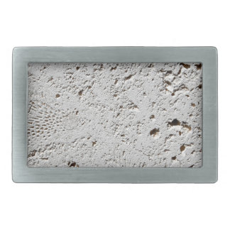 Fern Fossil Tile Surface Closeup Rectangular Belt Buckle