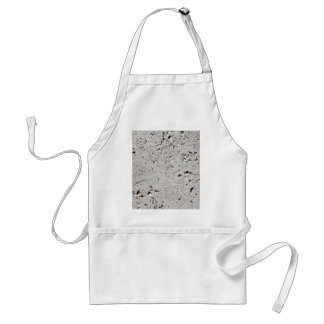 Fern Fossil Tile Surface Closeup Standard Apron