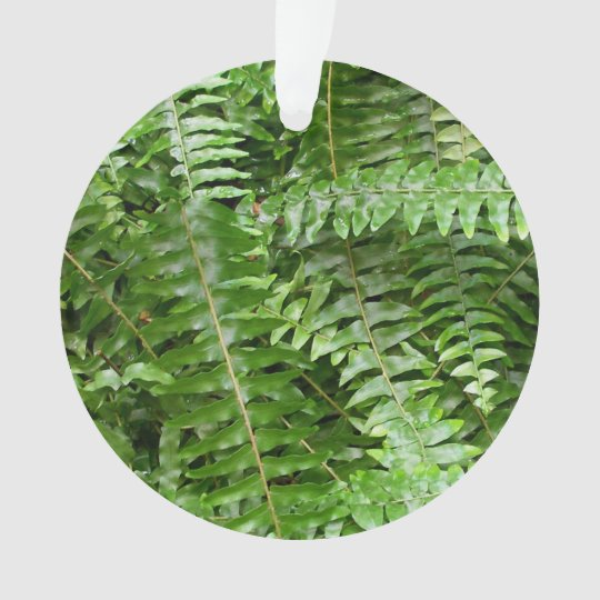 Fern Fronds I Green Nature Ornament