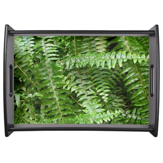 Fern Fronds I Green Nature Serving Platter