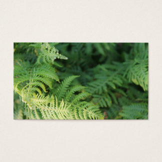 Fern Leaves. Business Card