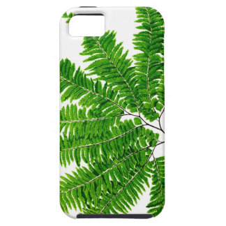 Fern no 5 home decor iPhone 5 case