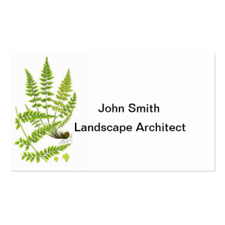 Fern No 6 Green Fern Plant Tropical Decor Business Cards