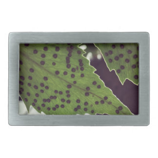 fern rectangular belt buckles