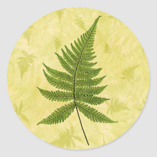 Fern Round Sticker