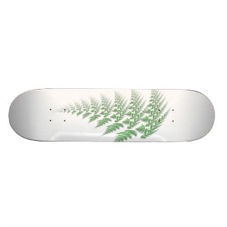 fern skateboards