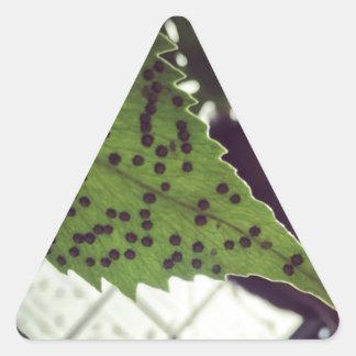 fern triangle sticker