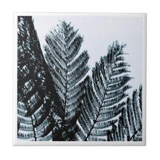 ferns a digital photographic image tile