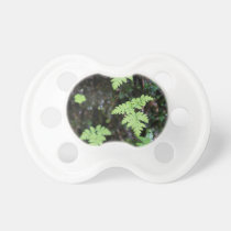 Ferns - baby pacifiers