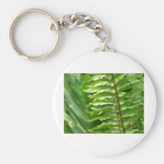 Ferns Basic Round Button Keychain