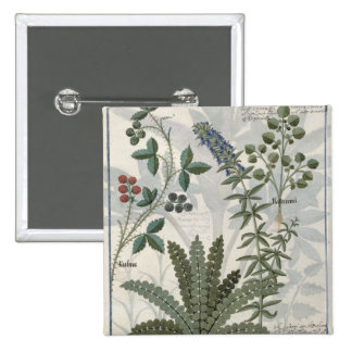 Ferns, Brambles and Flowers 2 Inch Square Button
