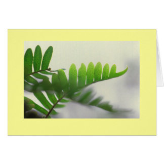 """Ferns"" Card"