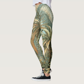 Ferns, Filicinae by Ernst Haeckel, Vintage Plants Leggings