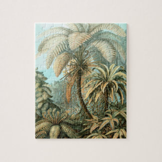 Ferns, Filicinae by Ernst Haeckel, Vintage Plants Puzzles