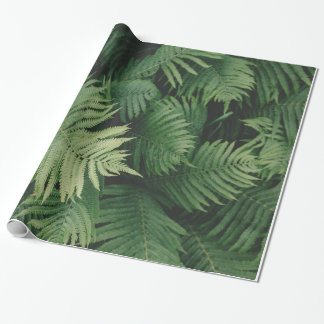 Ferns in Cool Green Shade Wrapping Paper