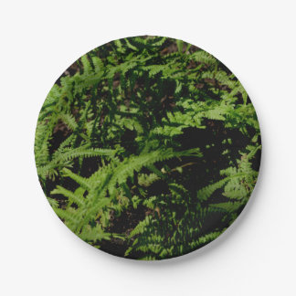 Ferns Paper Plate