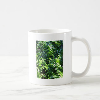 Ferny Getaway Coffee Mugs