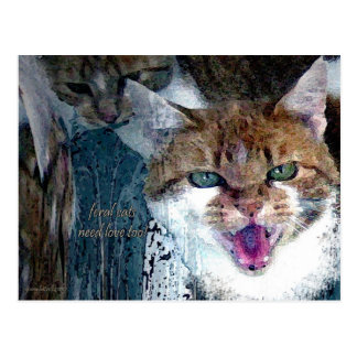ferral cats need love too postcard