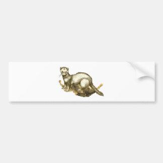 Ferret Bumper Stickers