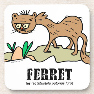 Ferret by Lorenzo © 2018 Lorenzo Traverso Coaster