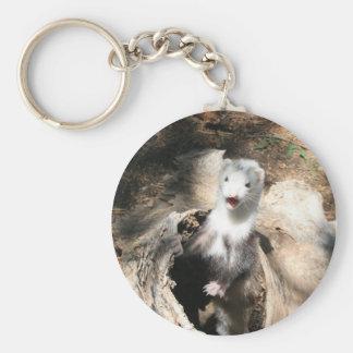 Ferret licks basic round button keychain