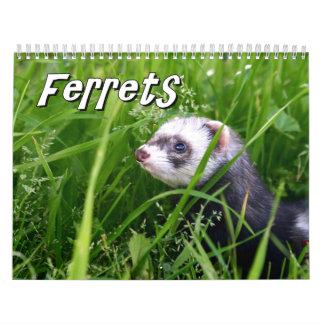 Ferrets Wall Calendar