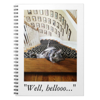 Ferris Mewler is hitting on you. Notebook
