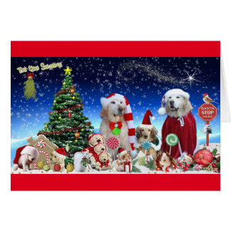 Festive Dogs dressed for Christmas Card