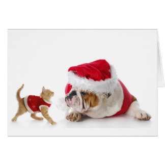 Festive Kitten and Bulldog Puppy Holiday Card