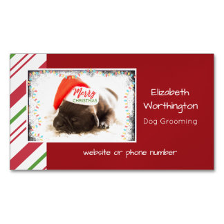 Festive Pug in Red Santa Hat with Christmas Lights Magnetic Business Card
