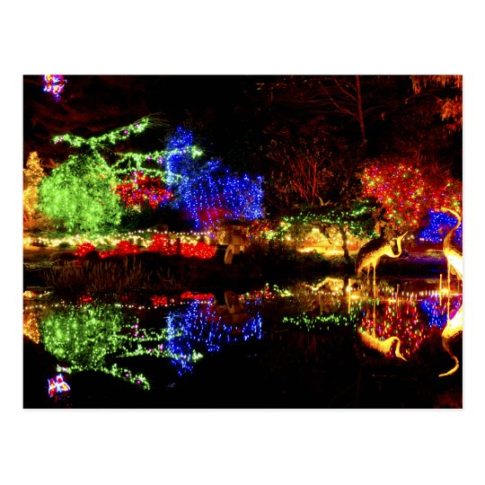 Festive Reflections - Shore Acres State Park OR Postcard
