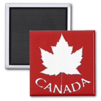 Feuille d érable du Canada d aimant de