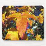 Feuille d'automne d'érable tapis de souris