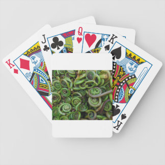 Fiddlehead Ferns Bicycle Playing Cards