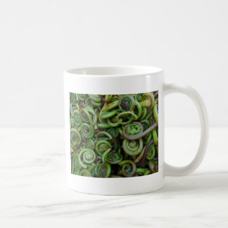 Fiddlehead Ferns Coffee Mug